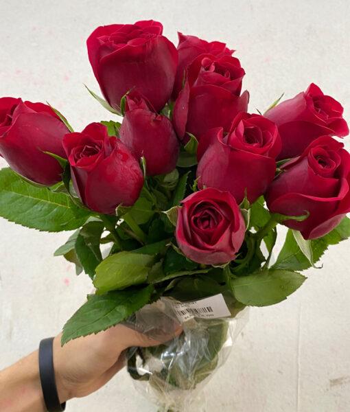 roseindia